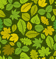 Different leaves seamless pattern natural endless vector image vector image