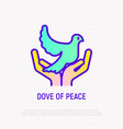 Dove in hands thin line icon