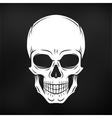 Human evil skull Jolly Roger logo template vector image vector image