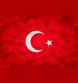 turkey flag polygonal vector image vector image