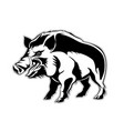 silhouette of a wild boar a wild pig vector image