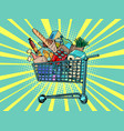 a grocery cart full purchases vector image vector image