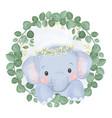 adorable baelephant vector image vector image