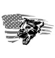 embroidery tiger head and rippled american flag vector image