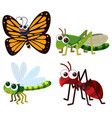 four different types of insects on white vector image