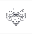 owl liliar illustration vector image