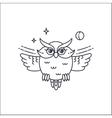 owl liliar vector image vector image