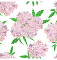 pink flowers pattern on white background vector image vector image