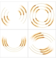 Set of 4 detailed Wheat ears EPS 10 vector image