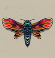 vintage colorful flying death head moth vector image vector image