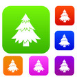 coniferous tree set collection vector image