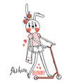 fashion kawaii bunny vector image