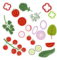 Ingredients to the salad vector image