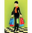 lady with shopping vector image vector image