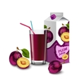 Plum juice set vector image vector image