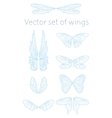 butterfly wings set vector image vector image