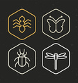 insect icons in line style vector image