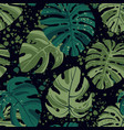 seamless tropical pattern with exotic palm leaves vector image vector image