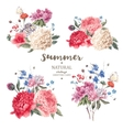 Set vintage floral bouquet of peonies vector image