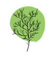 tree doodle isolated green leaves and stem on vector image vector image