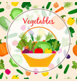 autumn fresh vegetable in basket vector image vector image