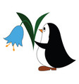 black and white penguine holding a blue flower on vector image