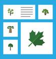 flat icon nature set of garden tree evergreen vector image
