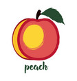 peach on white vector image vector image
