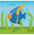 Sea fauna cartoon vector image vector image