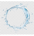 water splash circle vector image vector image