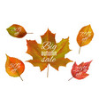 autumn sale fall leaves banners realistic vector image vector image