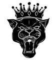 black panther with crown on his head and open vector image vector image