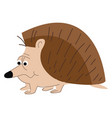 cartoon a big nosed spiny animal known as vector image