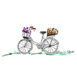bicycle with flower vector image vector image