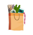 fresh food in a paper bag - in vector image vector image