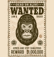 gorilla head wanted poster in vintage style vector image vector image