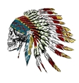 Hand Drawn Native American Indian Feather vector image vector image