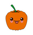 kawaii ripe pumpkin harvest vegetable food garden vector image vector image