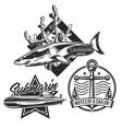 set underwater stuff vintage emblems vector image vector image