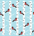 winter seamless pattern with bullfinches vector image vector image