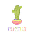 cute mexican cactus in a pot vector image