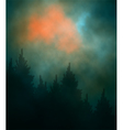 Dark sunset forest vector image vector image