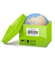 Globe in Green Box vector image vector image