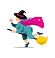 Halloween Witch on a broomstick Cartoon vector image vector image