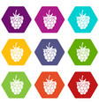 raspberry or blackberry icon set color hexahedron vector image vector image