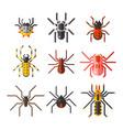 spider web silhouette arachnid fear graphic flat