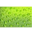water drops green background vector image vector image