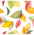 watercolor seamless print with autumn vector image vector image