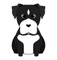 abstract cute dog vector image