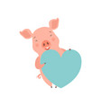 cute happy little pig with light blue heart fun vector image vector image